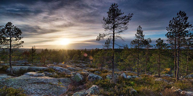 Norrland-landschap