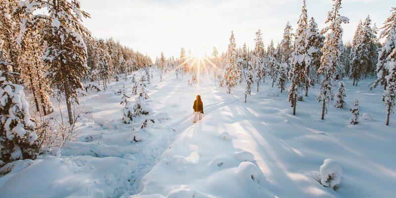 Bezoek Lapland in de winter