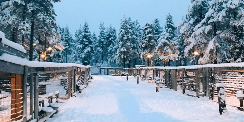 In oktober en november valt de eerste sneeuw in Lapland