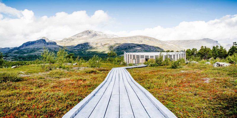 Landschap-in-Lapland-in-de-zomer