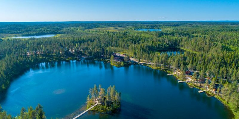 Pinetree Lodge Lapland in de zomer