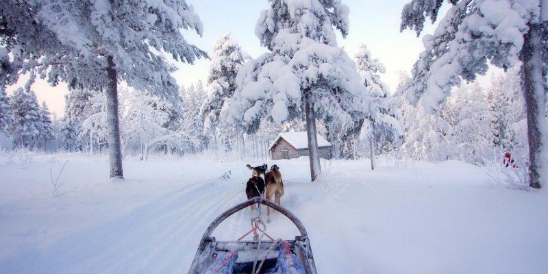 Puur genieten van de omgeving tijdens een meerdaagse huskytocht in Lapland