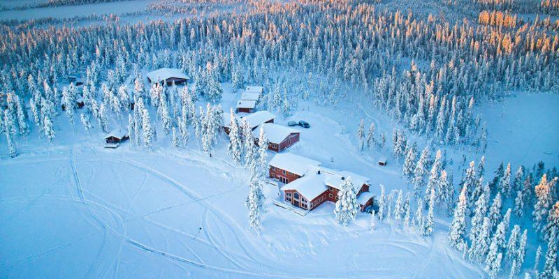 Pinetree Lodge Lapland