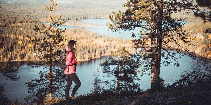 hiken in Oulanka national park in Finland