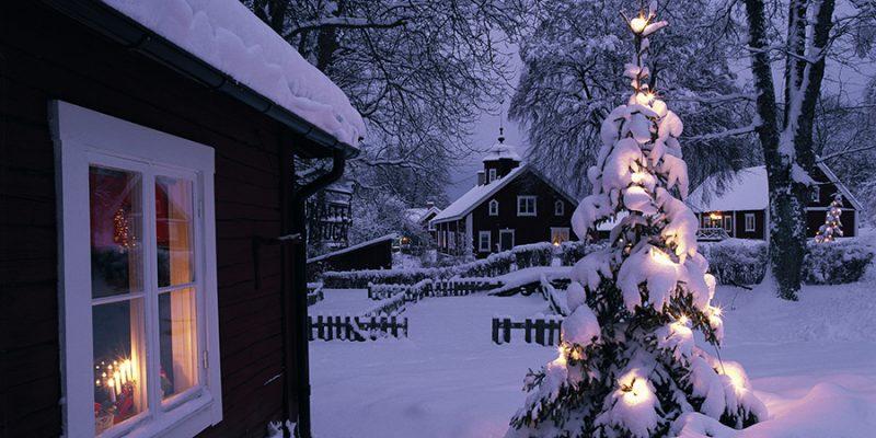 Kerstboom-in-Zweden-in-de-winter