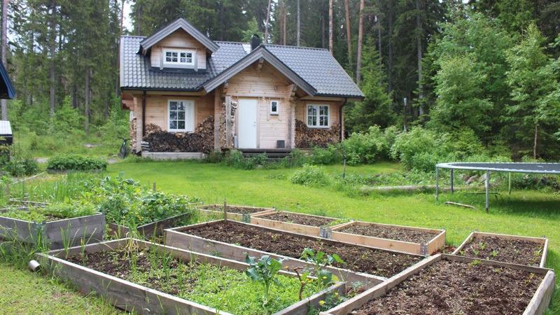 Lynx-Lodge-in-Zweden