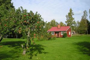 Roodkleurig vakantiehuisje in Zweden
