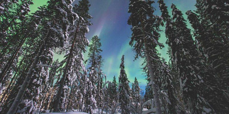 Noorderlicht in Lapland met Nordic