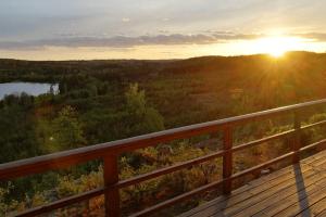 Vanaf je vakantiehuisje in Zweden geniet je van een prachtig uitzicht over de bossen