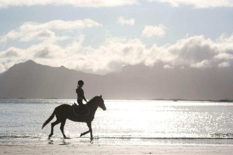 Te paard de Lofoten ontdekken