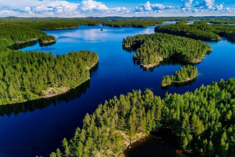 De Finse bossen