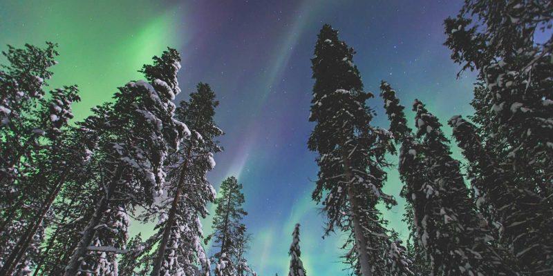 Lapland noorderlicht met Nordic