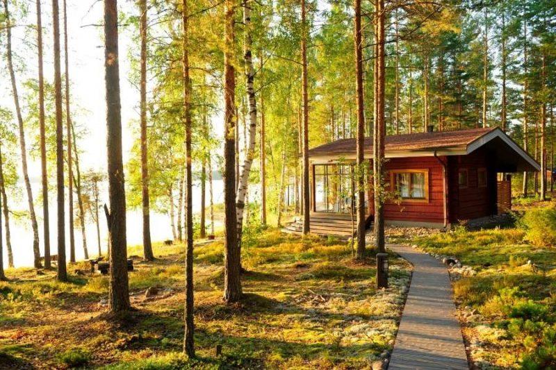 Relaxen-in-een-bos-in-Finland-Copyright-Anneli-Hongisto-Nordic