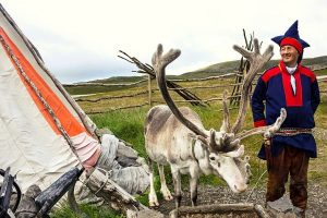 Sami en rendier Lapland zomer - reizen met Nordic
