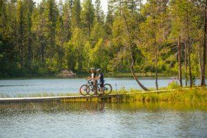 Aan de Pinetree Lodge kan je heerlijk mountainbiken in de bossen.