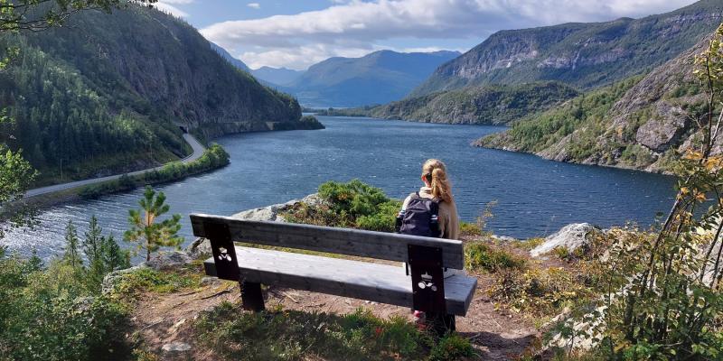 Uitzicht vanaf een bankje tijdens het wandelen in Noorwegen
