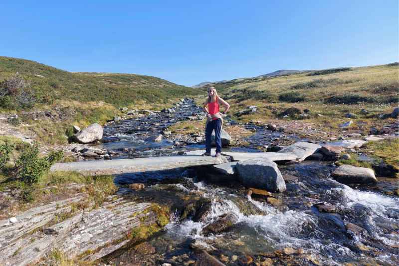 Brug over riviertje in Rondane Nationaal Park
