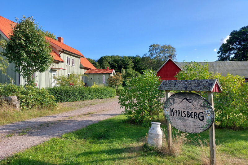 Een bed and breakfast in de natuur van Zweden