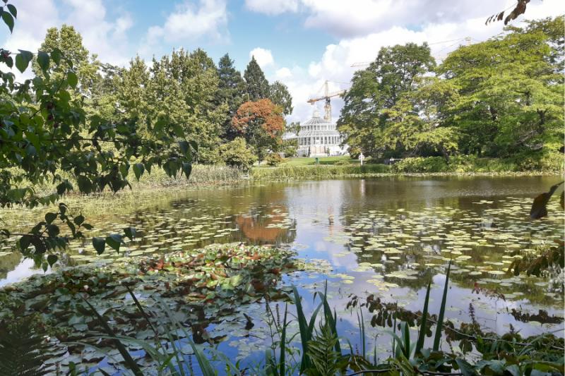Botanische tuin in Kopenhagen